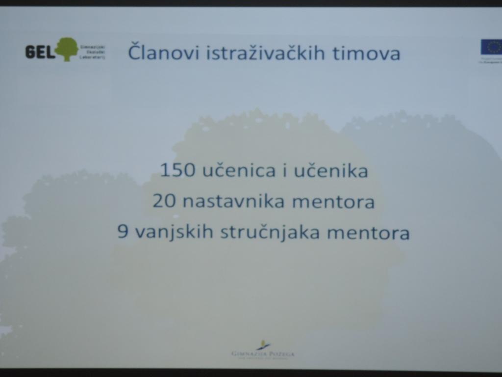 Voditelj projekta - Broj članova gimnazijskih istraživačkih timova
